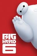 Family - Big Hero 6
